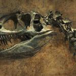 Dinosaur Trivia In Honor Of The New Jurassic Park Movie
